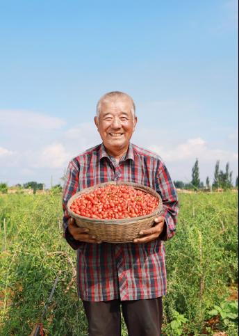 """拼多多农货节""""南果北粮""""上行1.1亿单,一线城市购买占比高达四成"""
