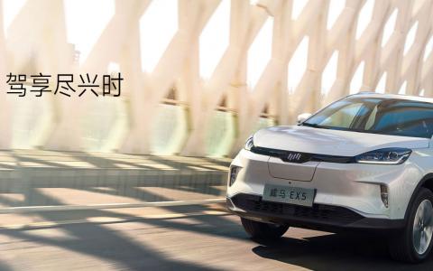 威马汽车:2019年,威马EX5累计交付量为16810辆