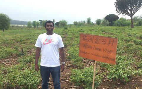 非洲崛起盒马村:卢旺达有了自己的订单农业
