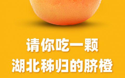 阿里打造紧急农产品数字供应链,助力湖北秭归脐橙销全国