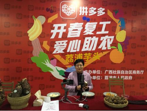 """荔浦市长一晚直播带货27吨:教会百万拼多多消费者鉴别正宗""""荔浦芋"""""""
