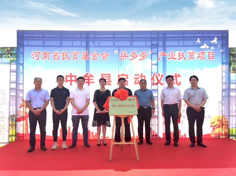 拼多多助力中牟县开启产业扶贫 530亩黄桃种植基地正式启动