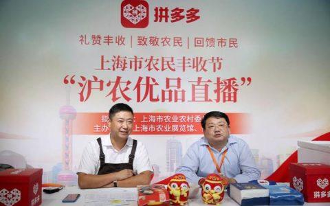 上海市农业农村委联合拼多多举办丰收节大联播,71万网友庆丰收拼好货