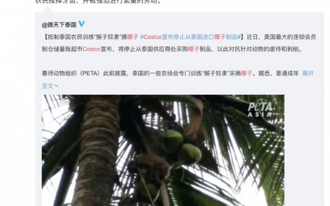 泰国工厂澄清猴子事件:我们从未用动物采摘椰子