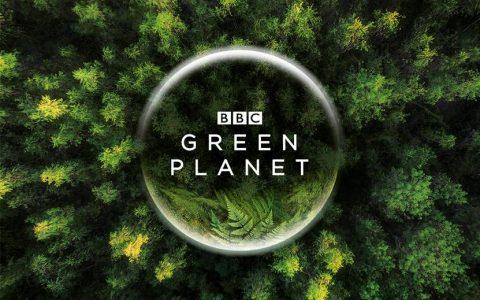 B站与BBC达成战略合作,将联合出品《绿色星球》等多部独家内容