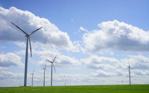 """世界环境日特刊:滴滴、美团等互联网企业数字赋能""""碳减排"""""""