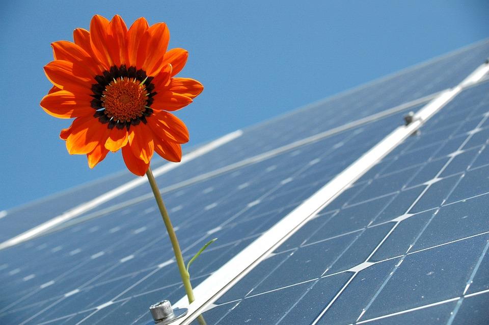 """建立健全""""双碳""""标准,优化能源结构,成高质量发展关键词 碳中和一周报"""